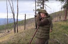Clip Tổng thống Nga Putin đón sinh nhật thứ 67 tại rừng Siberia