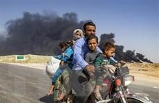 Liên hợp quốc: Gần 1.700 người Kurd ở Syria tìm cách tị nạn ở Iraq