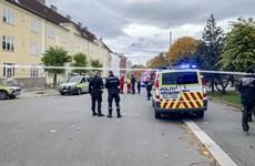 Na Uy: Xe cứu thương đâm vào nhiều người tại thủ đô Oslo