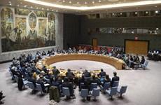 Đại sứ Thổ Nhĩ Kỳ và Syria đấu khẩu tại Hội đồng Bảo an