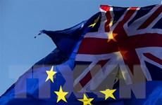EU chưa quyết định về khoảng thời gian cho phép gia hạn Brexit