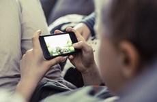 Tặng gà con để học sinh tiểu học rời xa các trò chơi điện tử