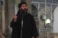 Lầu Năm Góc chưa bình luận gì về thông tin thủ lĩnh IS bị tiêu diệt