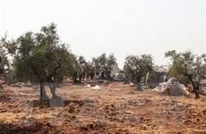 Chỉ huy SDF ở Syria cảnh báo nguy cơ IS trả thù cho thủ lĩnh Baghdadi