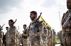 Chỉ huy SDF tại Syria thông báo về một chiến dịch thành công với Mỹ