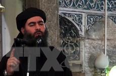 SOHR: Lính dù Mỹ đổ bộ vào khu vực thủ lĩnh IS bị chết