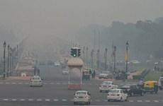 Chất lượng không khí ở thủ đô Ấn Độ xuống cấp do đốt rơm rạ và pháo