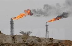 Giá dầu trên thị trường châu Á đi lên trong phiên 31/10