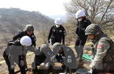 Hàn Quốc nối lại tìm kiếm hài cốt binh sỹ trong chiến tranh Triều Tiên