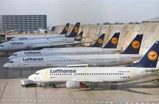 Lo ngại đình công, hãng hàng không Lufthansa hủy hơn 1.000 chuyến bay