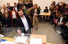 Bầu cử Tây Ban Nha: PSOE bác khả năng thành lập đại liên minh với PP
