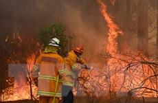 Australia: Xuất hiện thêm các đám cháy mới tại New South Wales