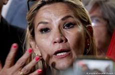 Thượng nghị sỹ Jeanine Anez tự xưng là Tổng thống lâm thời Bolivia