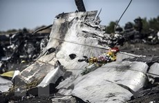 """Vụ MH17: Cơ quan điều tra công bố một đoạn ghi âm """"nhạy cảm"""""""