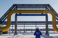 Nga, Trung Quốc khai trương đường ống dẫn khí đốt đầu tiên giữa 2 nước