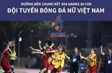 Đường đến chung kết SEA Games 30 của đội tuyển bóng đá nữ Việt Nam
