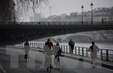 Bước đi 'được ăn cả, ngã về không' của Tổng thống Pháp Macron