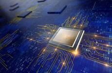 BOK: Xuất khẩu chip của Hàn Quốc sẽ phục hồi vào giữa năm 2020