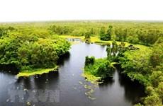 Vườn quốc gia U Minh Thượng - khu rừng độc đáo, quý hiếm trên thế giới