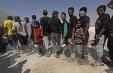 SOHR: Hơn 60 người thiệt mạng do đụng độ ở Syria trong 24 giờ