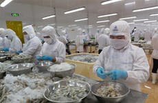 [Video] Con tôm, hàng xuất khẩu chủ lực của ngành nông nghiệp Việt Nam