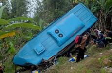Indonesia: Xe buýt lao xuống vực, ít nhất 24 người thiệt mạng