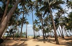 [Video] Thăm đảo Tam Hải - hòn ngọc quý của tỉnh Quảng Nam