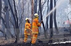 Australia: Không có mối liên hệ giữa cháy rừng và biến đổi khí hậu