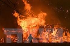 Vụ cháy ở Nga: Việt Nam hỗ trợ xác định quốc tịch, danh tính nạn nhân