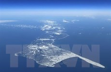 Nga bắt giữ tàu đánh cá Nhật Bản ngoài khơi quần đảo tranh chấp