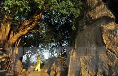Chiêm ngưỡng núi Non Nước - núi thơ của các bậc hiền nhân đất Việt