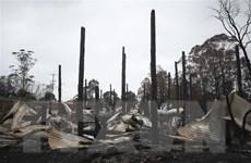 Australia sơ tán người dân thủ đô do cháy rừng bùng phát trở lại