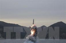 EU hối thúc Triều Tiên tuân thủ cam kết ngừng thử tên lửa và hạt nhân