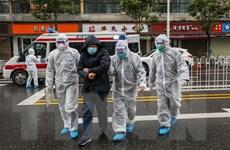 Dịch bệnh viêm phổi do virus corona: Số người tử vong tăng lên 258