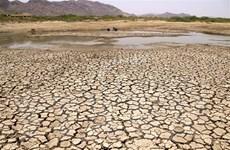 Nguy cơ sụp đổ hệ thống toàn cầu do khủng hoảng sinh thái
