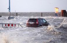 Đức chuẩn bị ứng phó với siêu bão đầu tiên trong năm Sabine