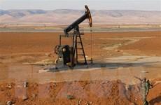 Mỹ không quan ngại về bất kỳ sự cắt giảm sản lượng dầu mỏ nào từ OPEC