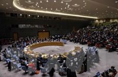 Nhiều ủy viên HĐBA không đồng tình với Kế hoạch Hòa bình Trung Đông
