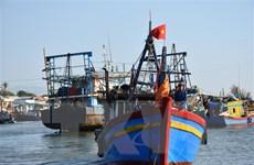 Ngư dân Quảng Trị kỳ vọng một mùa biển thuận buồm, xuôi gió