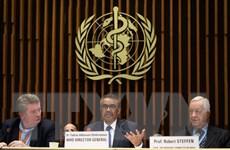 WHO đánh giá quá trình ứng phó dịch bệnh COVID-19 trên thế giới