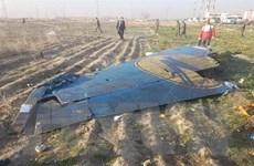 Canada hối thúc Iran điều tra độc lập vụ bắn nhầm máy bay