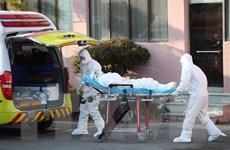 Mệt mỏi vì nhận diện tín đồ Shincheonji, 1 người tử vong vì kiệt sức