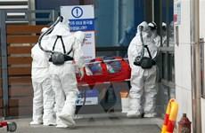 Hàn Quốc có 315 ca nhiễm mới, tổng cộng 2.337 người nhiễm COVID-19