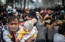 Liên hợp quốc kêu gọi giảm căng thẳng tại biên giới Thổ Nhĩ Kỳ-Hy Lạp