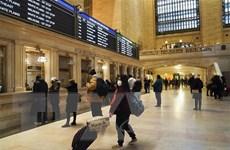 Tiểu bang New York xác nhận trường hợp đầu tiên nhiễm SARS-CoV-2
