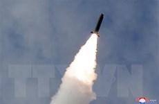 'Triều Tiên diễn tập bắn đạn thật, sử dụng bệ phóng tên lửa đa nòng'