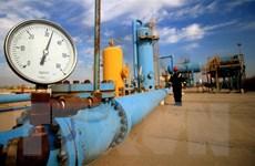 Giá dầu thế giới phục hồi sau khi 'chạm đáy' của bốn năm