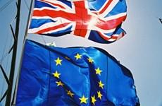 Anh và EU dự kiến tổ chức hội nghị trực tuyến để đàm phán thương mại
