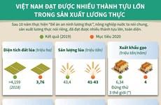 [Infographics] Việt Nam đạt nhiều thành tựu trong sản xuất lương thực