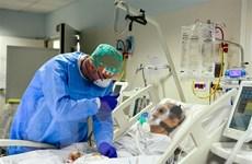 Số ca tử vong ở châu Âu do COVID-19 vượt mốc 50.000 người